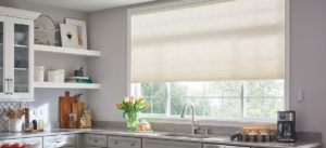 Honeycomb Shades Orlando